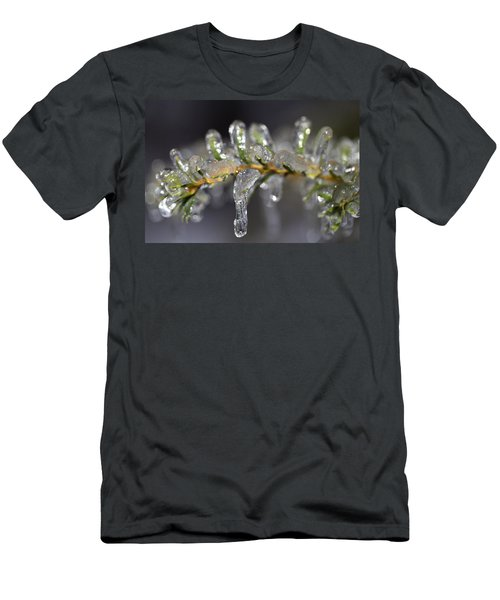 Frozen Yew Men's T-Shirt (Slim Fit) by Eunice Gibb