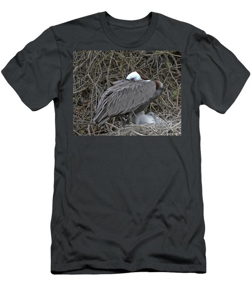 Galapagos - Watchful Pelican Men's T-Shirt (Athletic Fit)