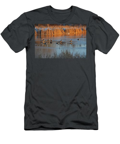 Geese In Wetlands Men's T-Shirt (Athletic Fit)