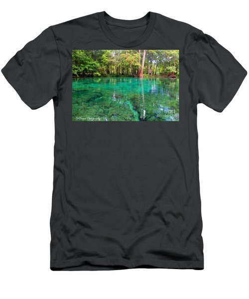 Ginnie Spring Along The Santa Fe Men's T-Shirt (Athletic Fit)