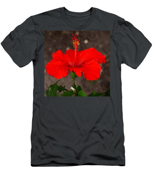 Glowing Red Hibiscus Men's T-Shirt (Athletic Fit)