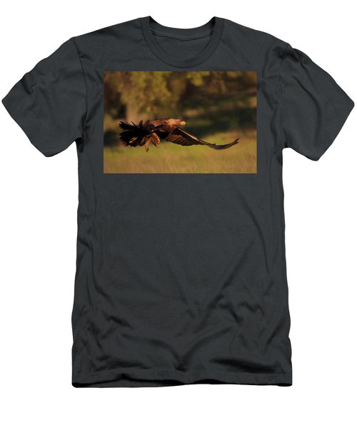 Golden Eagle On The Hunt Men's T-Shirt (Athletic Fit)