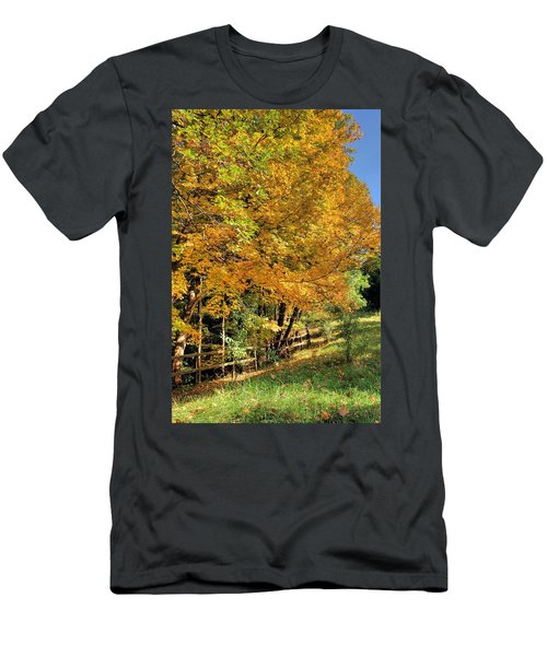 Golden Fenceline Men's T-Shirt (Athletic Fit)