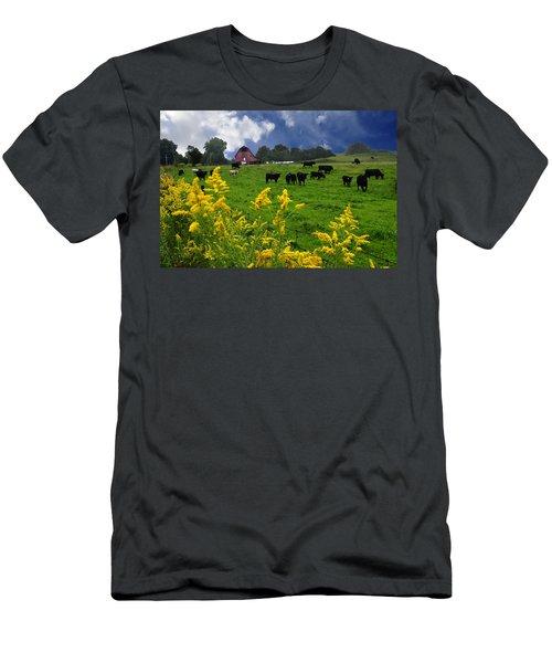 Golden Rod Black Angus Cattle  Men's T-Shirt (Athletic Fit)