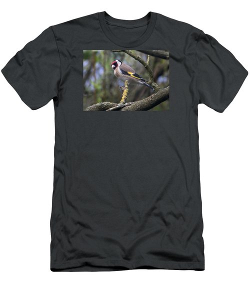Goldfinch Men's T-Shirt (Athletic Fit)
