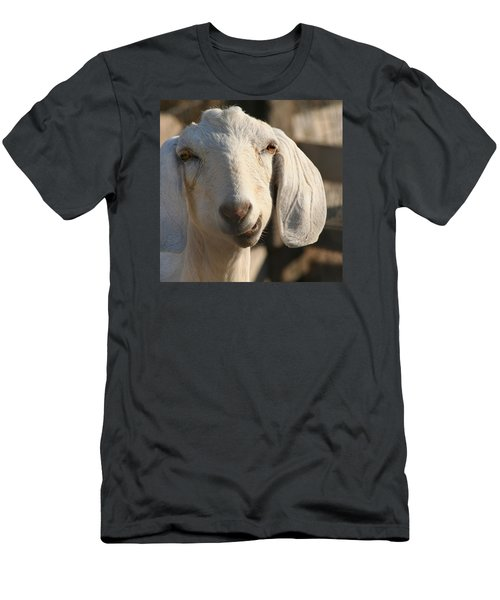 Goofy Goat Men's T-Shirt (Slim Fit) by Art Block Collections