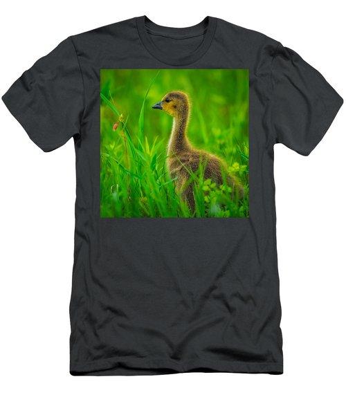 Gosling Men's T-Shirt (Athletic Fit)