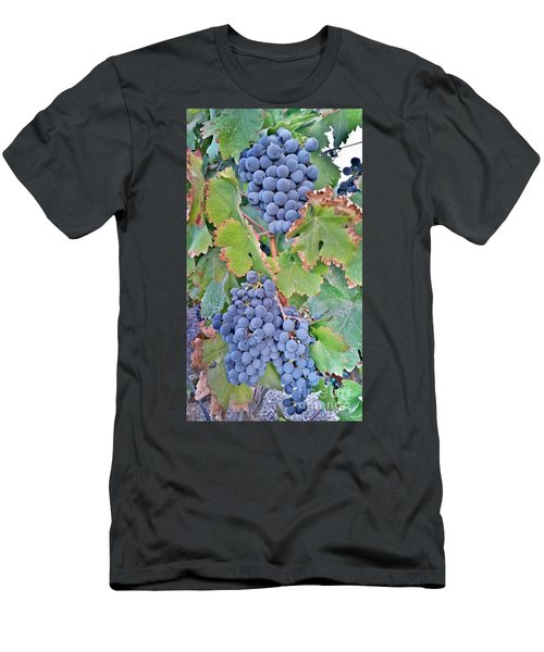 Grapes  Men's T-Shirt (Athletic Fit)