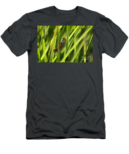 Grasshopper In Grass Men's T-Shirt (Athletic Fit)