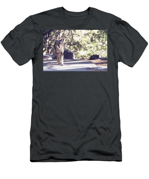 Coyote And Me At Vernal Falls Men's T-Shirt (Slim Fit) by Debby Pueschel