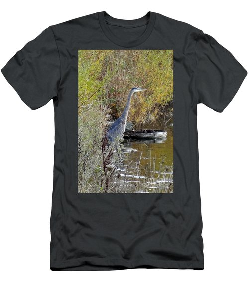 Great Blue Heron - Juvenile Men's T-Shirt (Athletic Fit)