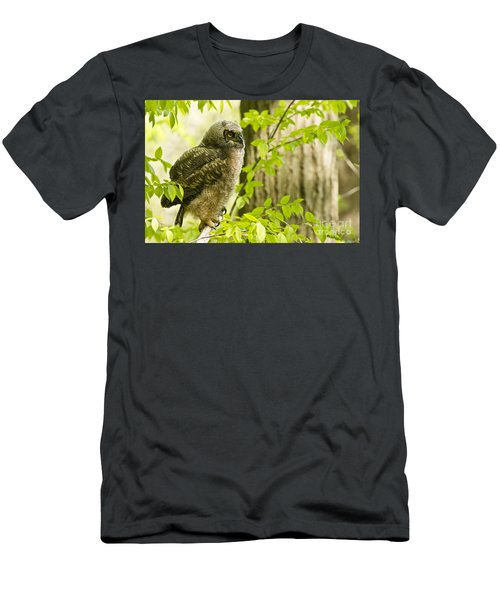 Great Horned Owlet Men's T-Shirt (Athletic Fit)