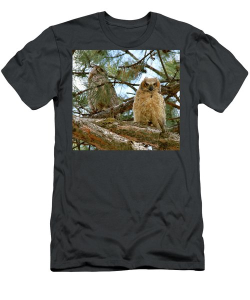 Great Horned Owls Men's T-Shirt (Athletic Fit)
