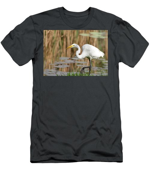 Great White Egret By The River Men's T-Shirt (Athletic Fit)