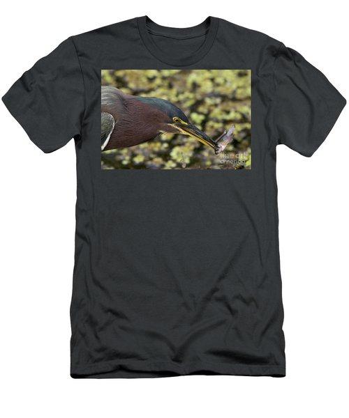 Green Heron Fishing Men's T-Shirt (Athletic Fit)