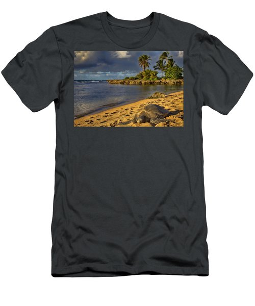 Green Sea Turtle At Sunset Men's T-Shirt (Slim Fit) by Douglas Barnard