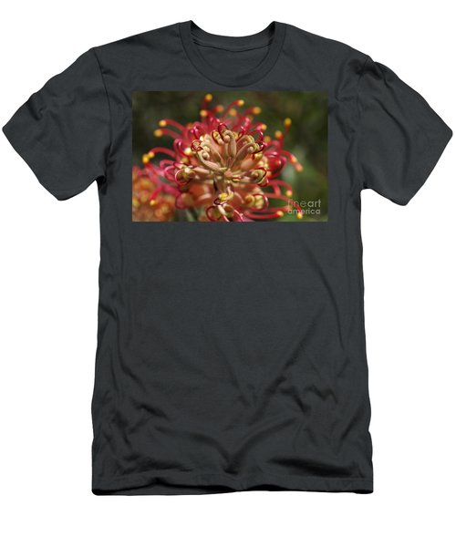 Grevillea Superb Australian Flora Men's T-Shirt (Athletic Fit)
