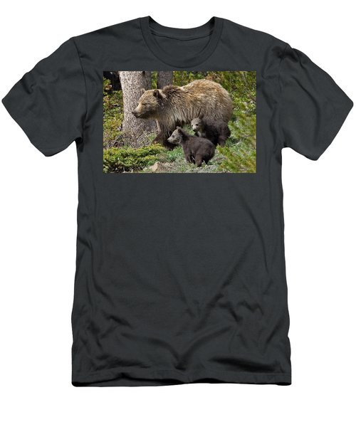 Grizzly Bear With Cubs Men's T-Shirt (Athletic Fit)