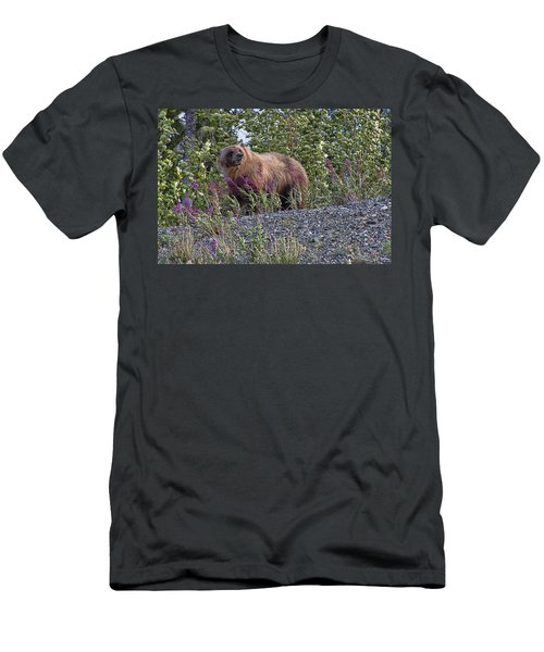 Grizzly Men's T-Shirt (Slim Fit) by David Gleeson