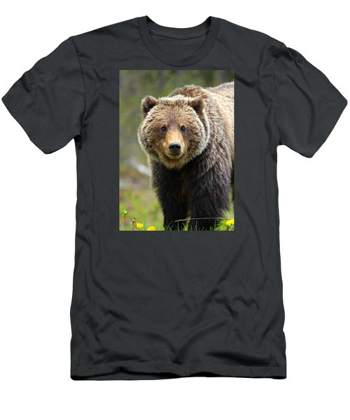 Grizzly Men's T-Shirt (Athletic Fit)