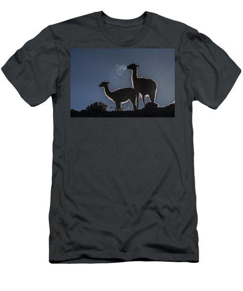 Guanaco Pair Torres Del Paine Np Men's T-Shirt (Athletic Fit)