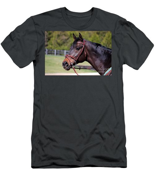 Handsome Gelding Men's T-Shirt (Athletic Fit)
