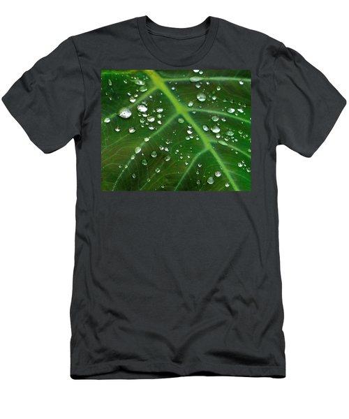 Hanging Droplets Men's T-Shirt (Athletic Fit)