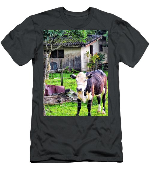 Men's T-Shirt (Slim Fit) featuring the photograph Hanzawa Cow 1 by Dawn Eshelman