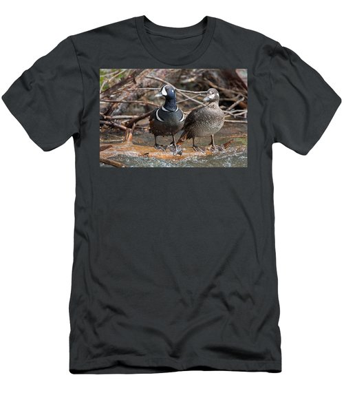 Men's T-Shirt (Slim Fit) featuring the photograph Harlequin Pair by Jack Bell