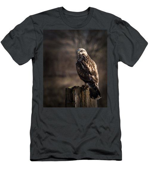 Hawk On A Post Men's T-Shirt (Athletic Fit)
