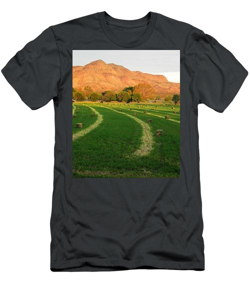 Hay Bales - Socorro - Nm Men's T-Shirt (Athletic Fit)