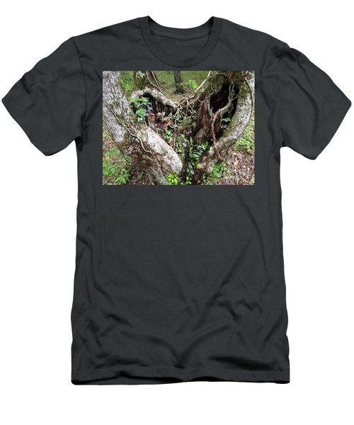 Heart-shaped Tree Men's T-Shirt (Athletic Fit)