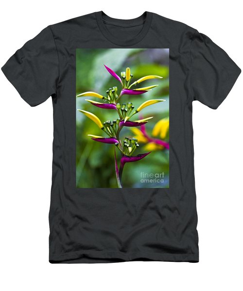 Heliconia Subulata II Men's T-Shirt (Athletic Fit)