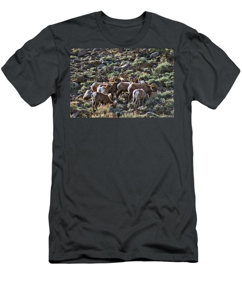 Herd Of Horns Men's T-Shirt (Athletic Fit)