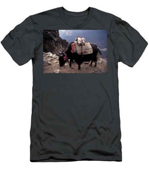 Himalaya Mountains Men's T-Shirt (Athletic Fit)