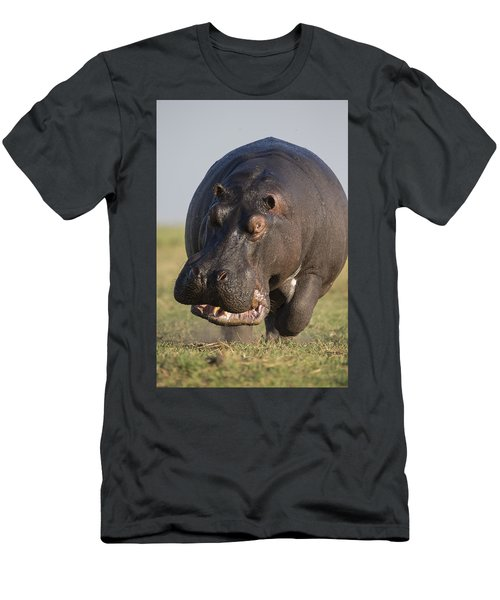 Men's T-Shirt (Athletic Fit) featuring the photograph Hippopotamus Bull Charging Botswana by Vincent Grafhorst