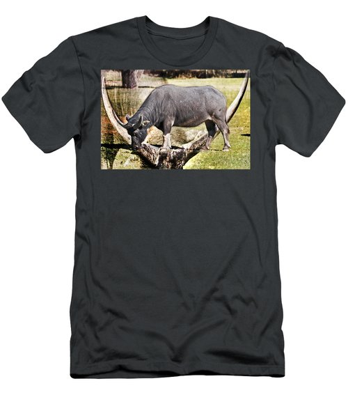 Horn Of A Buffallo Men's T-Shirt (Athletic Fit)