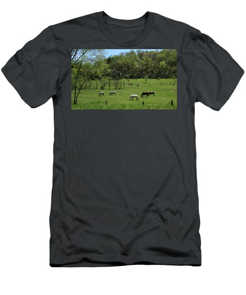 Horse 27 Men's T-Shirt (Athletic Fit)