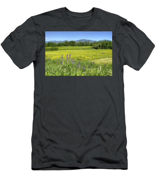 Horse In Buttercup Field Men's T-Shirt (Athletic Fit)