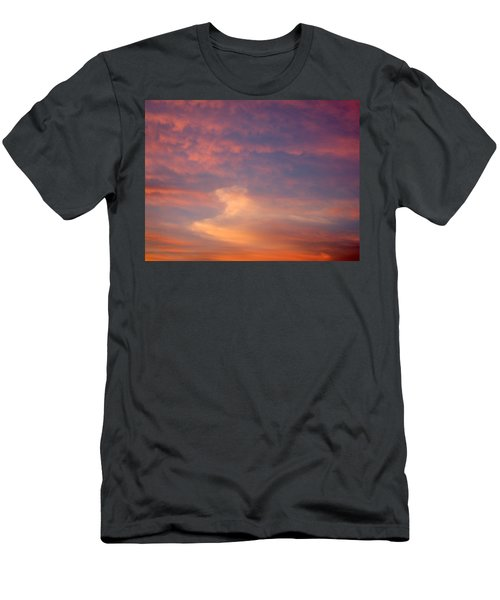Horse In The Sky Men's T-Shirt (Athletic Fit)