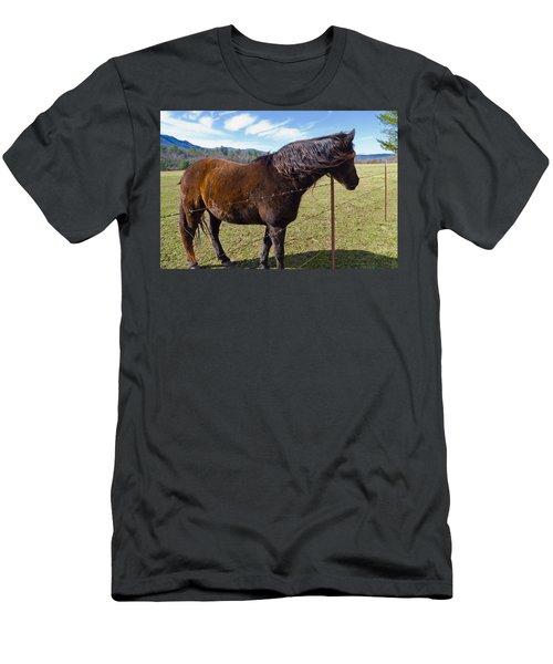 Horse Men's T-Shirt (Slim Fit) by Melinda Fawver