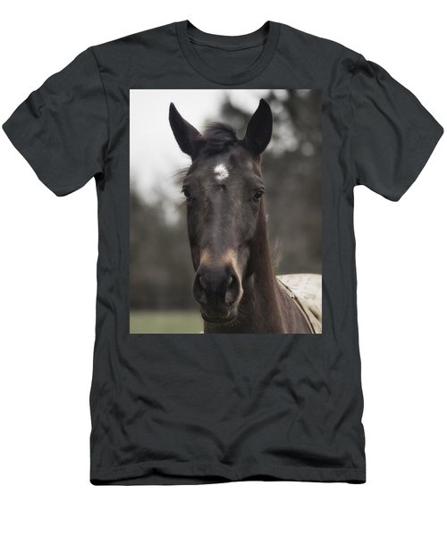 Horse With Gentle Eyes Men's T-Shirt (Athletic Fit)