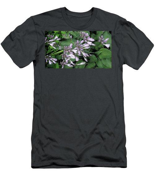 Hosta Ballet Men's T-Shirt (Athletic Fit)