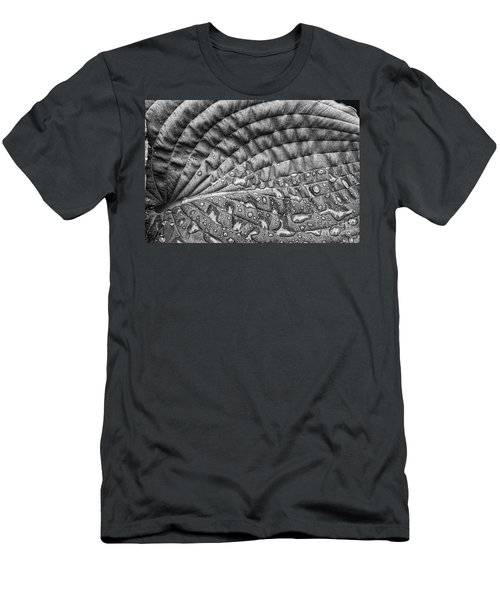 Hosta Leaf Men's T-Shirt (Athletic Fit)
