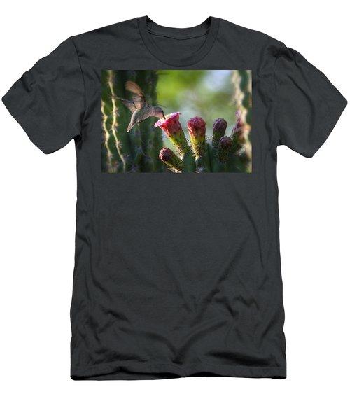 Hummingbird Breakfast Southwest Style  Men's T-Shirt (Athletic Fit)