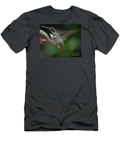 Men's T-Shirt (Slim Fit) featuring the photograph Hummingbird Male Anna In Flight Over Perch by Jay Milo