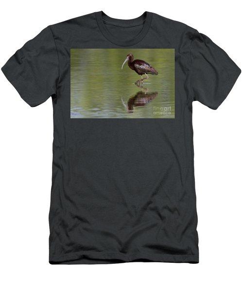 Ibis Reflection Men's T-Shirt (Athletic Fit)