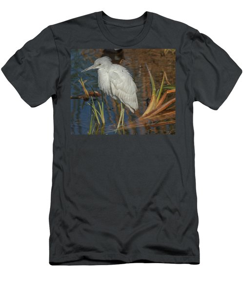 Immature Little Blue Heron Men's T-Shirt (Athletic Fit)