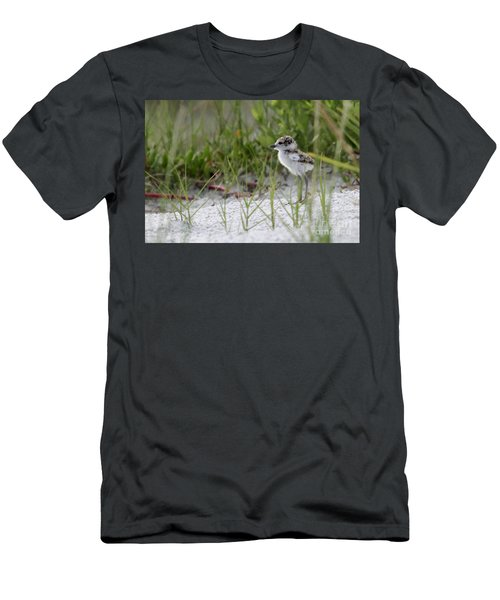 In The Grass - Wilson's Plover Chick Men's T-Shirt (Athletic Fit)