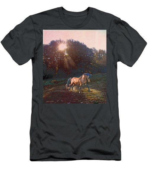 In The Light Men's T-Shirt (Athletic Fit)